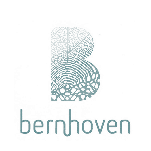 Management training Bernhoven